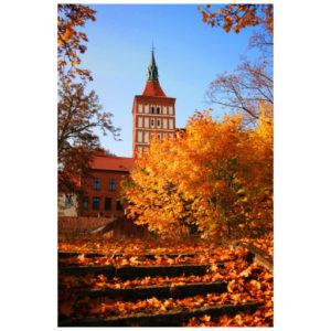 Gebouw in de herfst